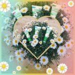 photocollage_2020428162351414.jpg